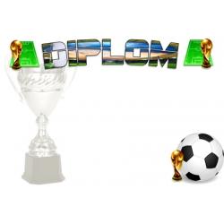 Diplom DSF1 / B Futbal