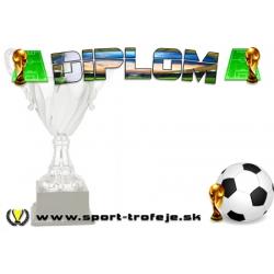 Diplom DSF1 / ZR Futbal
