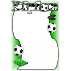 Diplom DVF4 / 1-3 Futbal
