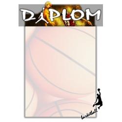 Diplom DVB1 / 1-3 Basketbal