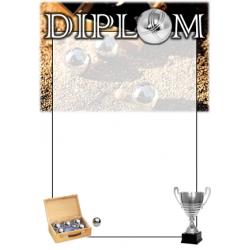 Diplom DVPT1 / 1-3 Petanque