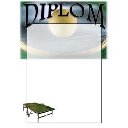 Diplom DVPP1 / 1-3 Stolný tenis