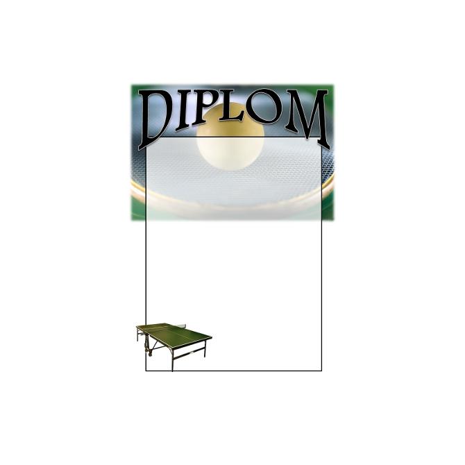 Diplom DVPP1 /  Stolný tenis