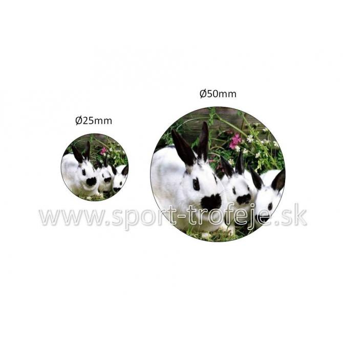 emblém EPDCHZ1 zajace drobnochov