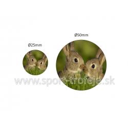 emblém EPDCHZ3 zajace drobnochov