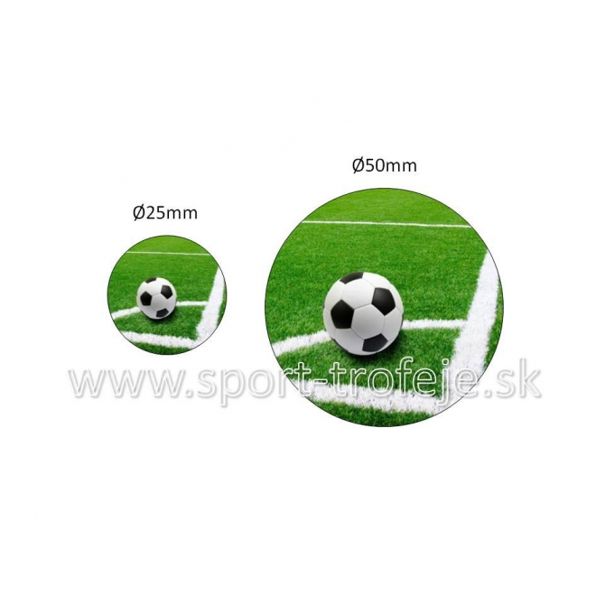 emblém EPFUT2 futbal