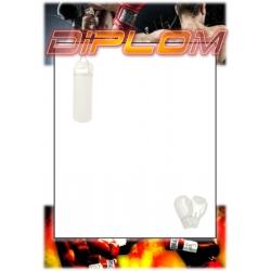 Diplom DVBOX1 / 1-3 Box
