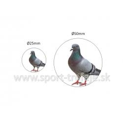 emblém EPDCHH1 holub drobnochov