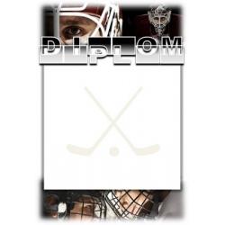 Diplom DVHB1 / 1-3 Hokejbal