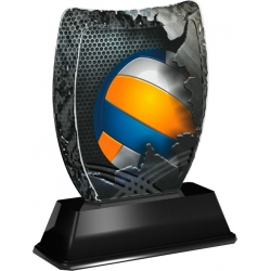 Trofej / plaketa ACE2018M17 volejbal