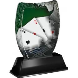 Trofej / plaketa ACE2018M29 karty