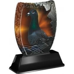 Trofej / plaketa ACE2018M37 holub