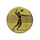 zlatý emblém A6 Volejbal
