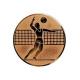 bronzový emblém A6 Volejbal
