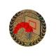 emblém AGM103 basketbal holografický