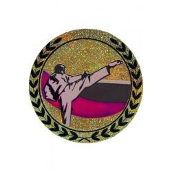 emblém AGM111 Karate holografický