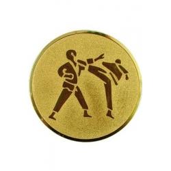 emblém A60 Karate